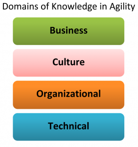 4 domains of agility