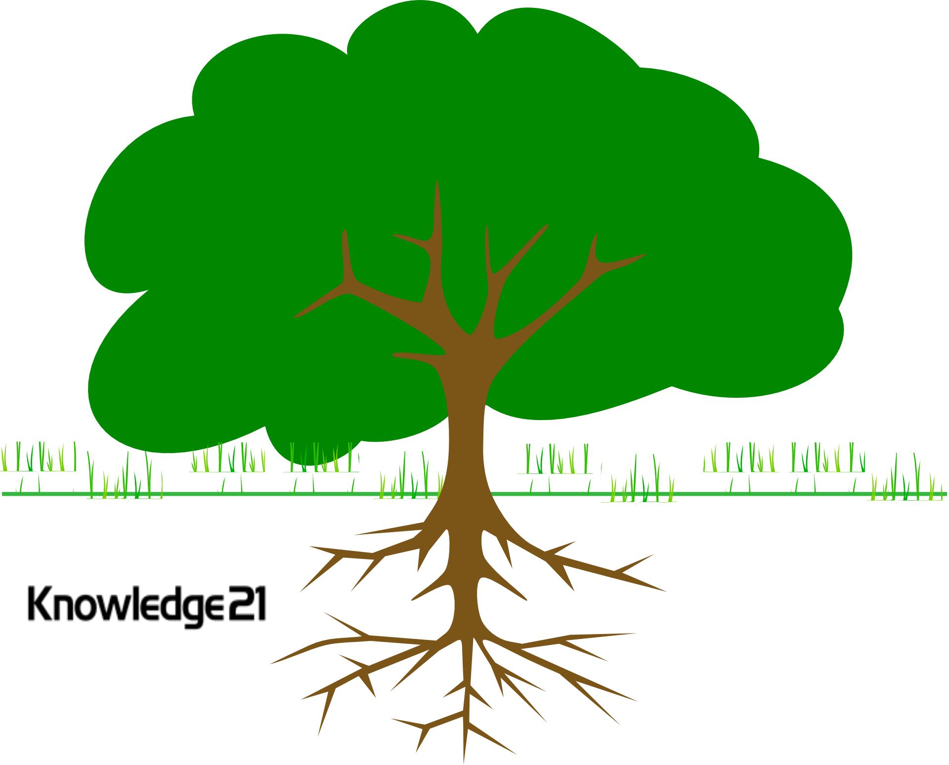 Root Cause Retrospective