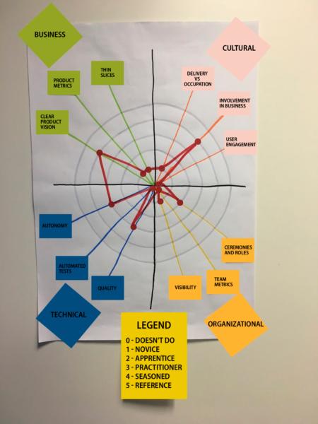 team assessment coaching